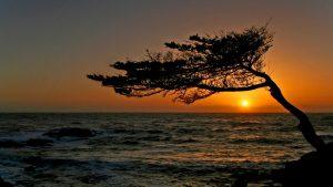 ---stunning-california-sunset-16796