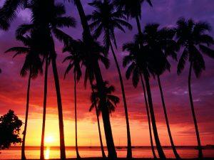 ---sunset-beach-wallpapers-1651
