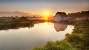 ---swamp-sunset-wallpaper-12338