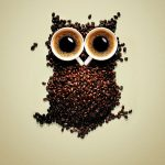 ---funny-coffee-owl-wallpaper-9137