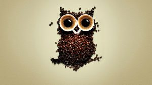 ---funny-coffee-owl-wallpaper-9137