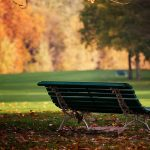 ---autumn-bench-meadow-6758