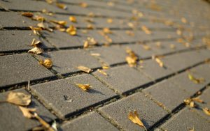 ---autumn-leaves-tile-6777
