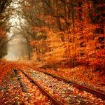 ---autumn-railway-2293