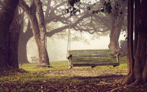 ---autumn-swing-13395