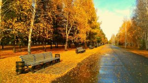 ---autumn-wallpapers-717