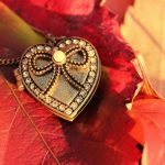 ---macro-leaves-pendant-heart-autumn-15660