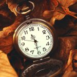 ---macro-watch-time-leaves-autumn-10361