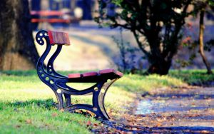 ---mood-bench-park-leaves-path-fall-autumn-10565