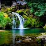 ---forest-waterfall-wallpaper--14873