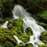 ---moss-waterfall-15831