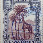 nyassa 2 half reis correios portugal 1901 lilabraun brown brun rouge giraffe stamp