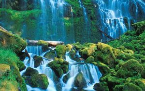 ---tropical-waterfall-pictures-12564