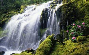 ---waterfall-wallpaper-17159