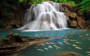 ---waterfall-wallpapers-6082
