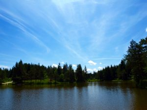 lake green forest blue sky