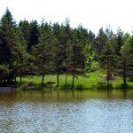 rakitna jezero