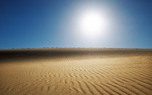 27 02 17 desert landscape background5228