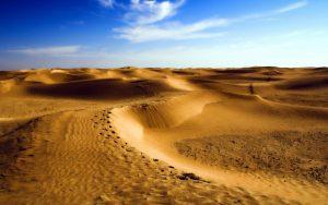 27 02 17 desert landscape8761