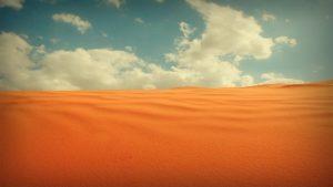 27 02 17 desert landscape9473