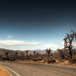 28 02 17 desert landscape wallpaper5229