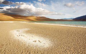 beaches coastal deserts 13509