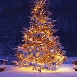 christmas tree wallpaper 7752
