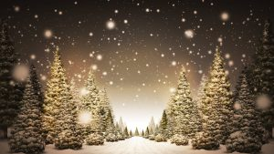christmas trees wallpaper p 7754