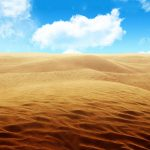 desert sand hd 8312