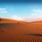 desert wallpapers 945