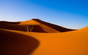 desert wallpapers 946