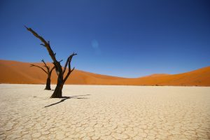 namib desert 3844x2563 coastal desert 4k 5840