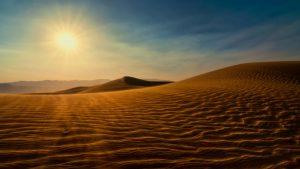 sahara desert 11695