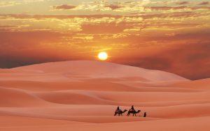 sahara desert 11697