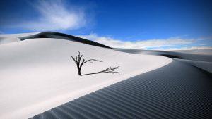 white desert sand 12893